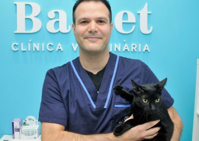 Bastet Clinica Veterinaria